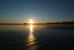 Tofino (Mark Demeny) Tags: sunset beach wideangle tofino 1224mmf4g nikkor