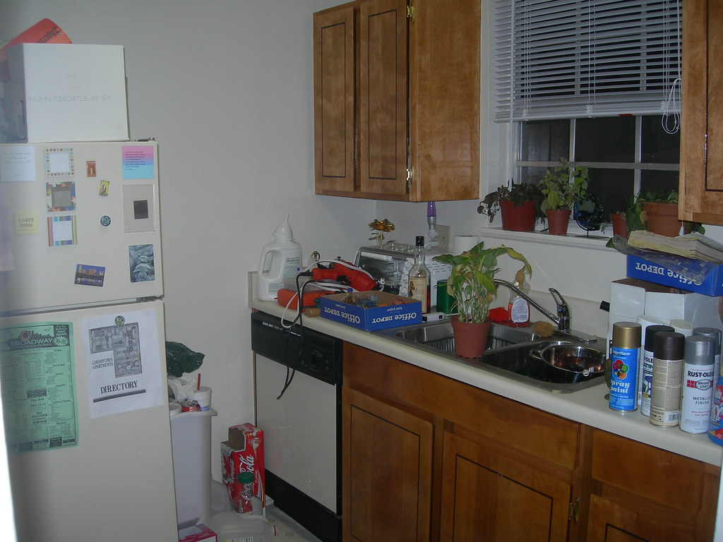 One half of my kitchen--BEFORE