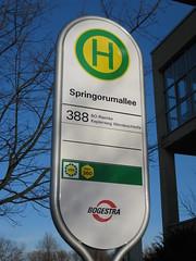 Bochum - Springorumallee (Buslinie 388)