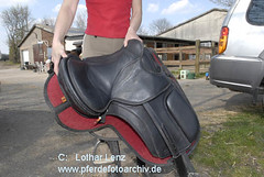 _LL00356 (Lothar Lenz) Tags: horse caballo cheval barefoot cavalo pferd hest equus paard sattel hst hestur konj hobu zirgs lotharlenz baumlosersattel