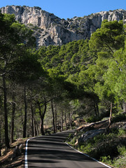 Andalusia & Murcia 2006