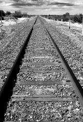 Transcontinental Railway (Yokels) Tags: blackandwhite bw vanishingpoint track rail railway australia nsw newsouthwales outback menindee lptracks