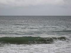 waves (Maggie Paige) Tags: newzealand southisland abeltasmannationalpark coastaltrack
