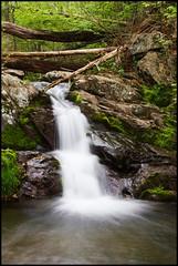Shenandoah National Park: Doyles River Trail ([Christine]) Tags: virginia waterfall spring hike shenandoahnationalpark naturesfinest s