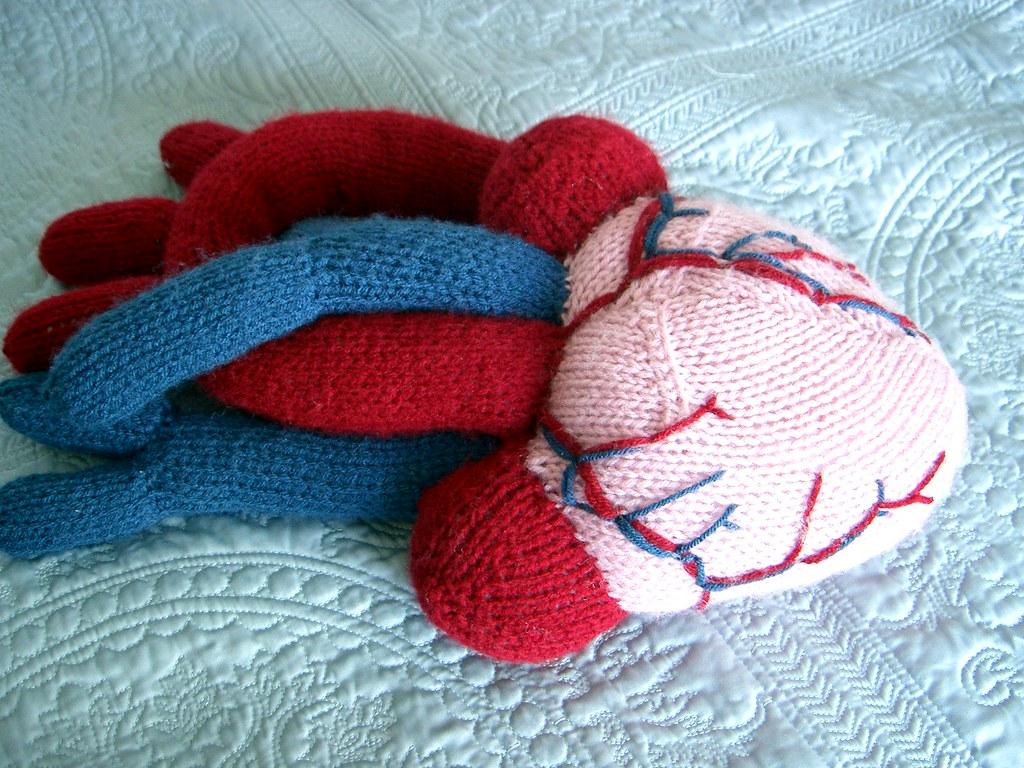 Knit Anatomical Heart - KNITTING