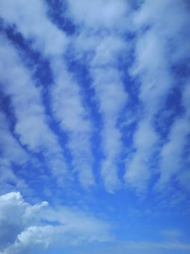 bars in the sky