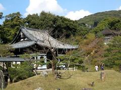 京都・高台寺 臥龍廊1