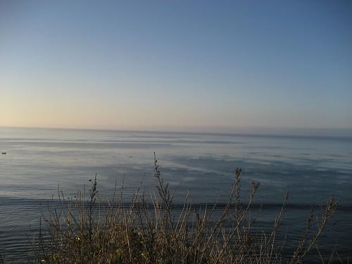 Fog bank at sea