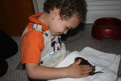 Aidan & a Brand New Kitten