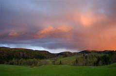 Malvik in May #2 (Krogen) Tags: nature norway landscape norge spring natur norwegen olympus c7070 noruega vår krogen landskap noorwegen noreg trøndelag malvik flickrsbest buaasen