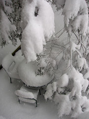snow storm (chelseafb) Tags: winter usa snow newjersey jerseycity unitedstates nieve snowstorm nj neve jc neige northeast