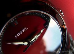 KILLING TIME (mauricio cevallos www.mauriciocevallos.com) Tags: macro clock fossil watch reloj fz30 supershot p1f1 ysplix