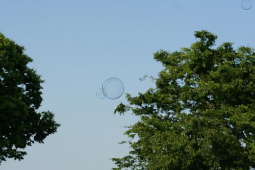 bubbles #6