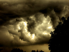 Nature's wrath! (undernier) Tags: sky storm france birds clouds burgundy fury turmoil