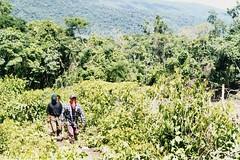 Chiapas 108