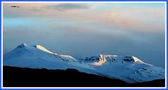 Evening light (joningic) Tags: white snow mountains nature iceland súlur kerling holidaysvacanzeurlaub