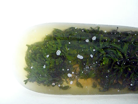 hot-seaweed-bath-ireland