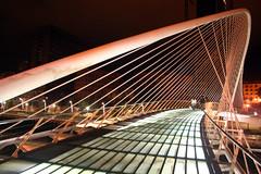 IMG_1697 (matteo_dudek) Tags: estate bilbao ponte viaggi notte spagna zubizuri challengeyouwinner motifdchallengewinner photofaceoffwinner photofaceoffgold pfogold