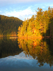 snap up a morning coffee (axiepics) Tags: morning blue trees sky lake canada mountains reflection nature sunshine forest sunrise reflections landscape dawn golden interestingness scenery bc view britishcolumbia explore vancouverisland getty northamerica exploreinterestingness portalberni daybreak gettyimages sproatlake orangeandblue alberni gettyimage supershot interestingness28 explored interestingnesstop500 i500 theworldthroughmyeyes 1gw challengeyou challengeyouwinner mywinners mywinner abigfave cywinner gettyimagescom mtwinners anawesomeshot unature superbmasterpiece beyondexcellence superhearts unaturefav theunforgettablepicgtures challengeyouwinhner gameswinner highestposition313onsundaymay132007 gettyimagesaxiepics gettyimageslicensedforsale copyrightalexskellyallrightsreserved