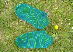 OBS sock in Grass