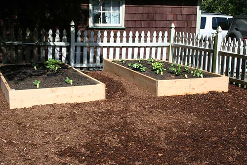 Veg Garden - done