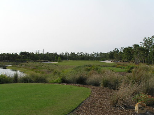 Tiburon Golf Club, Black Course, Ritz Carlton Golf Resort, Naples, Florida