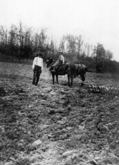 Farming in Plummer's Hollow, 1919