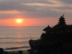 TANA3479 (Nancy WWWebb) Tags: bali bird snake tanahlot