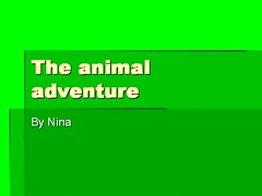 The animal adventure