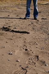 Marks (Karolina Axelsson) Tags: beach norway sand shoes legs footsteps larkollen