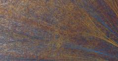 rosette80-4298-detail2 (neil banas) Tags: cloud art texture generative processing chamber particle physics largeformat computational processingorg