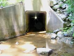 Tunnel trail under Rt. 83