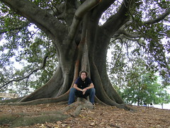 Me on fig tree (nospuds) Tags: tree park phil sydney fig