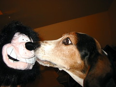 Bacon meets Gnasher
