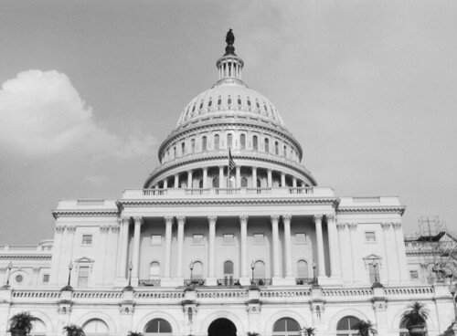 Understanding the Effects of Constituency on Persuading Congress