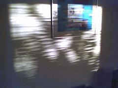 Sunlight (Tom Insam (old)) Tags: exif:missing=true