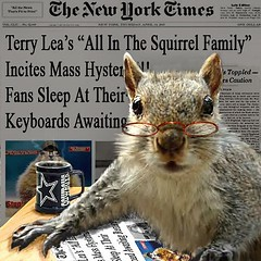 new squrrel soap series begins (Terry_Lea) Tags: squirrel newyorktimes tbas