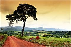 Landscape (Fernando Porto) Tags: brazil color colour minasgerais topv111 brasil topv2222 landscape topf50 topv555 topv333 bravo minas 300d canon300d topv1111 topv999 topv444 topv222 topf300 topv5555 gmi topv777 topv9999 topv11111 topf150 topv3333 topv4444 topf100 topv666 grupomineirodeimagens cor topv888 topv8888 topv6666 topv7777 topv33333 topv22222 canon1740mm superbmasterpiece