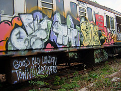 DSCF0226 (goatsquad) Tags: ntcrew graffiti tmcrew bombing beef dissed trains throwups oker dels neas dpm