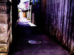The alley of recollections