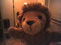 Lion! (Tom Insam (old)) Tags: exif:missing=true