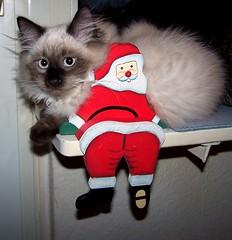 Funny and Santa