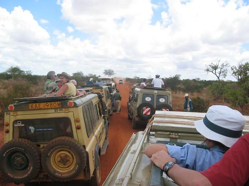 Cosas a tomar en cuenta en un Safari en el África