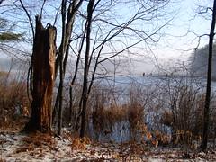 Musquash Pond