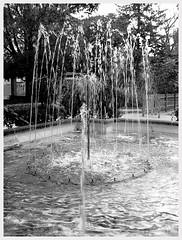 (minusbaby) Tags: espaa fountain spain fuente murcia yecla