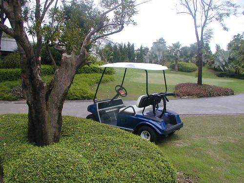 Golf 2001