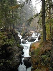 Rogue River (jillmotts) Tags: nature water oregon river outdoors rogueriver jillmotts