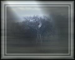 Windmill (JRR) Tags: windmill fog homestead ranchoroberts ouryard