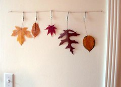 Fall leaves inspiration (Something To See) Tags: brown fall leaves homedecor inspirationboards