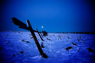 Old Fence by Moonlight